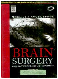 Brain Surgery Complication Avoidance And Management By Michael